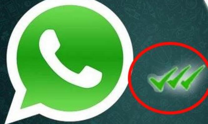 WhatsApp-tripla-spunta