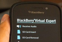 BlackBerry Virtual Expert