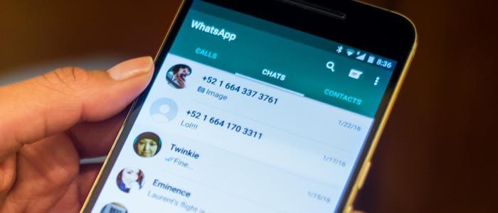 Gruppi e Chats su WhatsApp