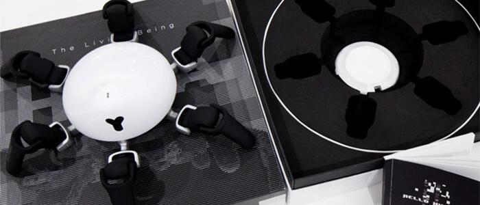 Hexa robot Kickstarter