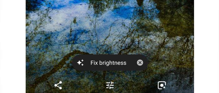 Google Photo Fix-it